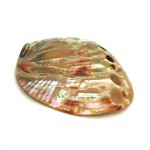 Abalone Shell Red Polished 5-10cm