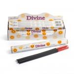 Divine Incense Hex(6 Tbs) Stamford