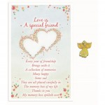 Love Is Angel Pin - A Special Friend (6 Pcs) LOI015