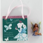 Fairy Magic Bag - Special Day(6 Pcs) FMG011