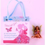 Fairy Magic Bag - Special Girl (6 Pcs) FMG012