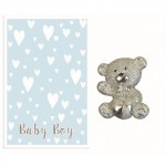 Baby Delights - Baby Boy (6 pcs) BDE015