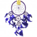 Dream Catcher Purple 16cm