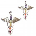 2 For 1 Price - Chakra Bird Silver Plated Pendant SP Chain