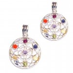 2 For 1 Price - Chakra Flower of Life Silver Plated Pendant SP Chain