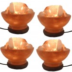 Salt Lamp Bowl Curved 6 in (4 Pcs) Special