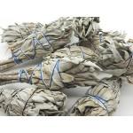 Sage Smudge Sticks 4in Californian (100 Pcs)