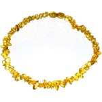 Amber Necklaces Free Form