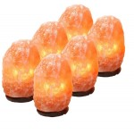 Salt Lamp 3 to 5 Kg Complete Special Box of 7 Pcs