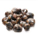 Chiastolite Tumbled Stone 20-30mm (100g)