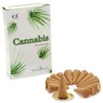 Cannabis Incense Cones (12 Pks) Stamford