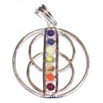 Chakra Wheel of Life Silver Plated Pendant SP Chain