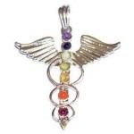 Chakra Bird Silver Plated Pendant