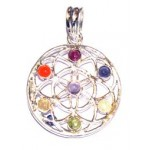 Chakra Flower of Life Silver Plated Pendant SP Chain